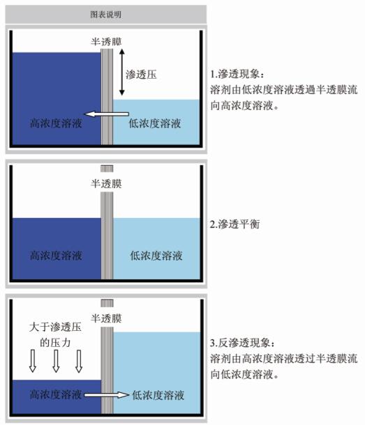 反渗透膜是由具有高度有序矩阵结构的聚合纤维素组成